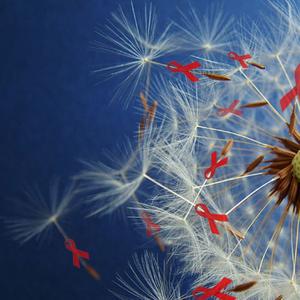 Dandelion Message