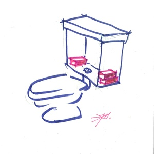 BRICKS IN WC TANK