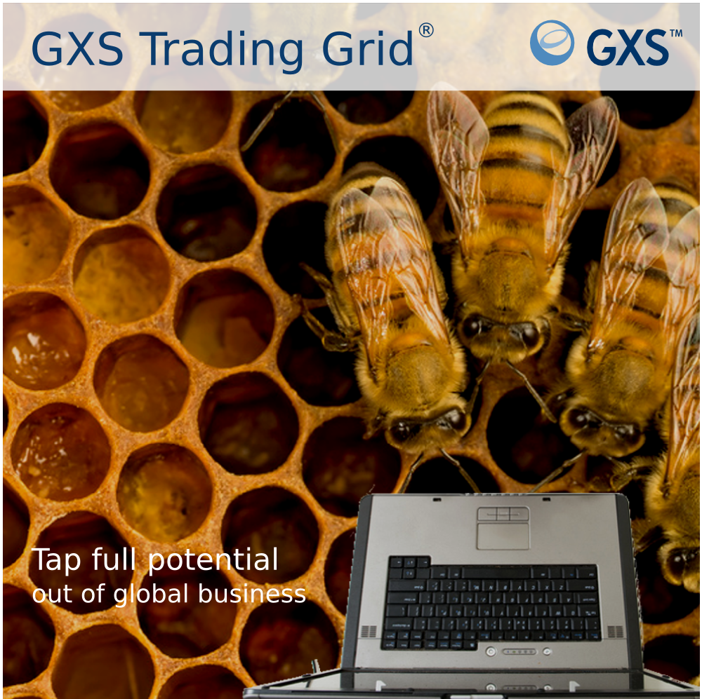 Draft2 gxs trading grid bigger