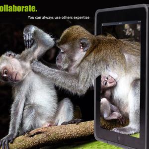 Collaborate.