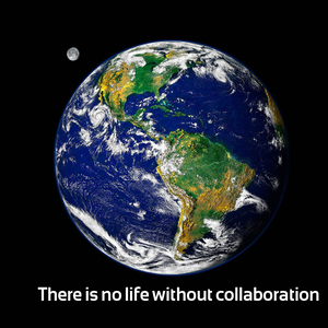 There is no life without collaboration