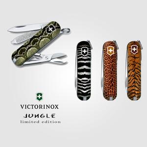 """""""Jungle """""""