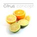 Citrus concept