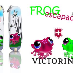 Frog escapade
