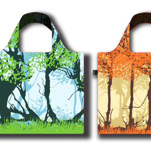 Nature in four seasons