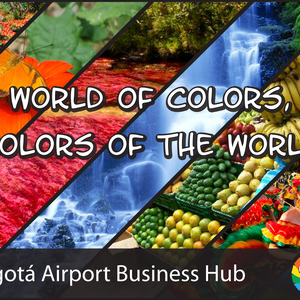 World of colors / Colors of the World