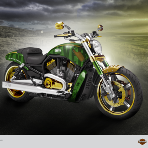 Muscle Jever Harley Davidson