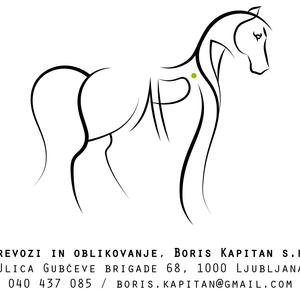 Logo for Boris Kapitan s.p.