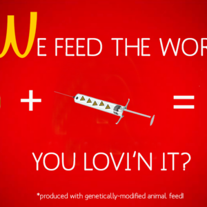 WE FEED THE WORLD!