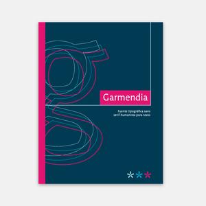 Type Design | Folded Brochure
