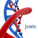 jovoto DNA