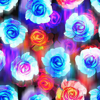 Roses 1 width340
