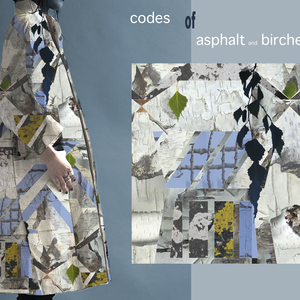 CODES of Asphalt - Birches - and Twigs