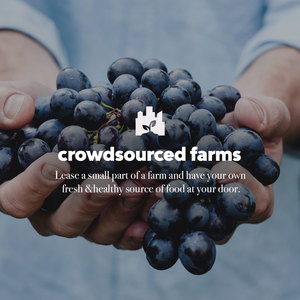 Crowdsourced Farms