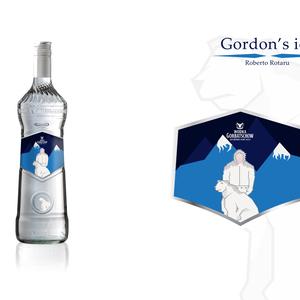 Gordon's ice