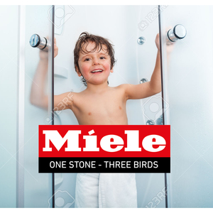One Stone - three Birds