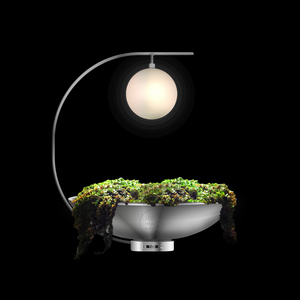 Table Plant Lamp