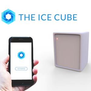 The IceCube
